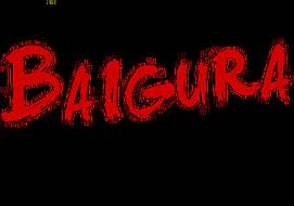 Site Web Base de Loisirs de Baigura - Baigurako Aisialdi Gunearen Webgunea