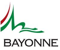 Website bayonne.fr Webgunea